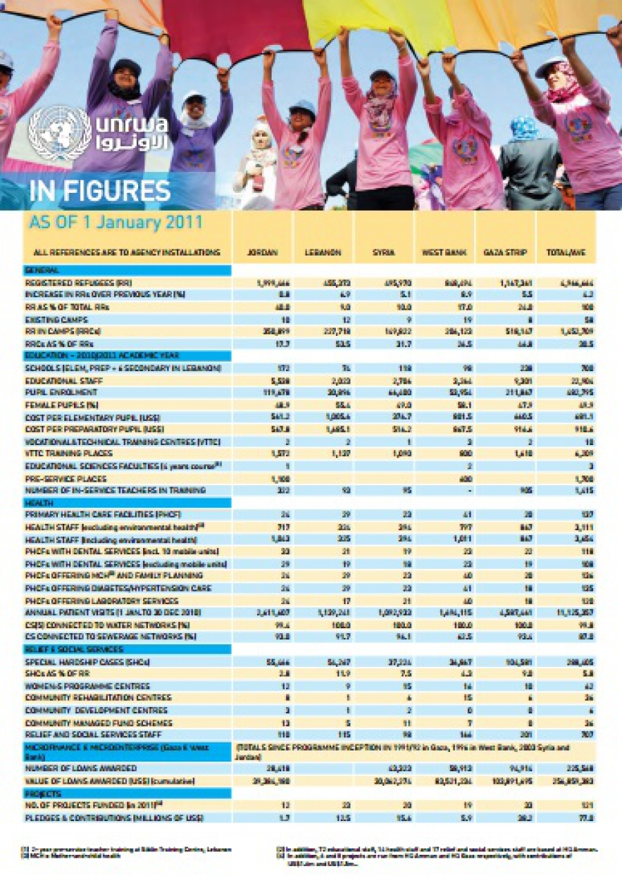 In figures 1 enero 2011